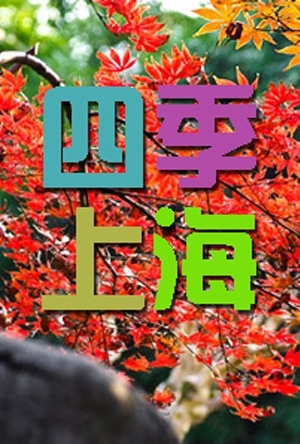力量之声快闪亮相-四季上海新闻-170121-生活